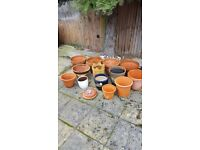 Various garden pots. All clean and in good condition.