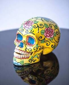 YELLOW ROSE LOTUS POD SKULL - Milly + Eugene - Brand new stock South Coogee Eastern Suburbs Preview