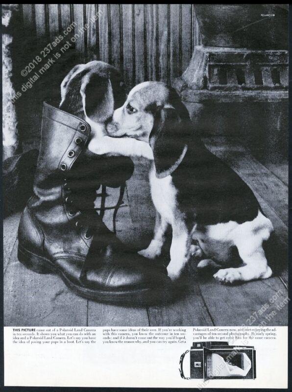 1962 beagle photo Polaroid instant camera vintage print ad