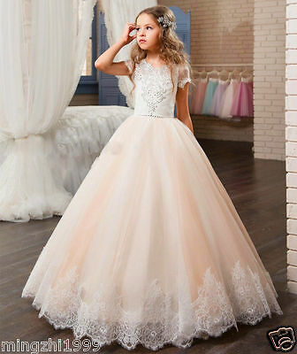 New Lace 2017 Flower Girl Dresses Kids Birthday Weddings Holy Communion Gowns - Cinderella Dress 2017