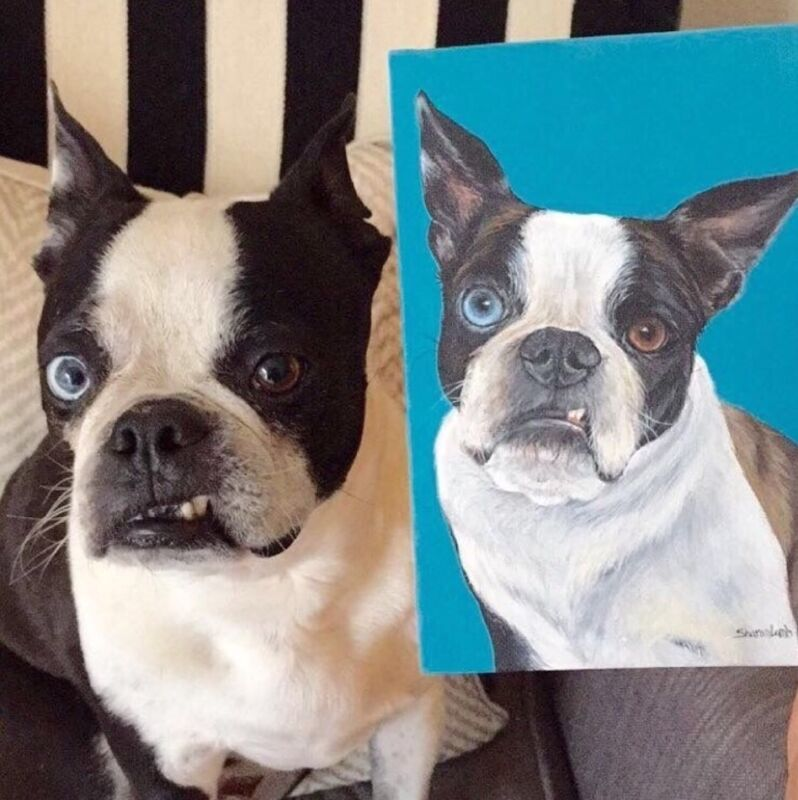 Life Like 8x10 Custom Pet Painting Commission Any Animal Artist Sharon Lamb