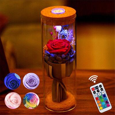 Bloom LED Rose Bottle Lamp Flower Bottle Light with Remote Control Night Light U