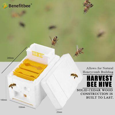 Harvest Bee Hive Beekeeping King Queen Box Feeder Keeping Equipment Tool Kit
