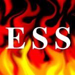 Environmental Safety Services