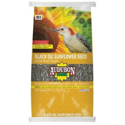 Audubon Park 11801 Black Oil Sunflower Seed Wild Bird Food, 40 Lbs