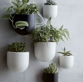 Wall Planters Brand new unopened