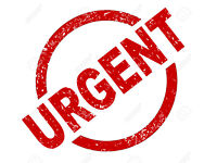 Urgent 2 BED PROPERTY WANTED (pay up to 6 months in advance) Hereford