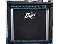 Peavey Envoy 110 Teal Stripe 35 Watts Amplifier