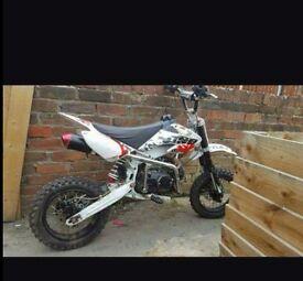110cc lifan pit bike offers