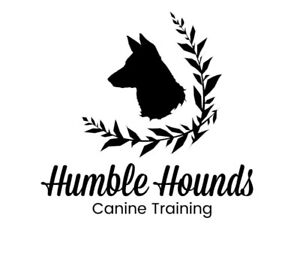 Private Dog Training, Walks, Boarding & More!