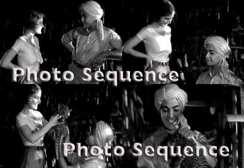 SON of INDIA Ramon Novarro Madge Evans PHOTO Sequence #10
