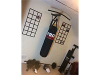 Pro Power boxing bad