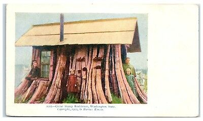 1902 Family in Cedar Tree Stump House, WA Postcard