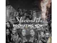 MSG recruiting Bar Staff / Floor staff / Waiters / Waitress for Shooshh nightclub Brighton