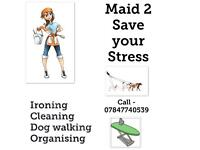 Cleaner, Organiser, Ironer