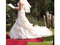 Pronovias Megan Wedding Dress Size 12 Plus Petti Coat