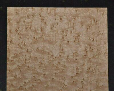 Birdseye Maple Raw Wood Veneer Sheet 8 X 22 Inches 142nd Thick  J7681-25