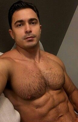 Shirtless Male Muscular Hairy Chest Pecs Abs Beefcake Hunk Body PHOTO 4X6 F1479
