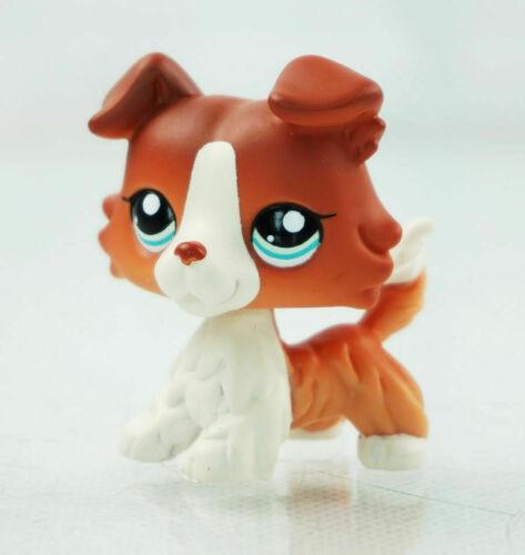 littlest Pet shop LPS#1542 dark red collie  dog  kid toy