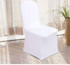 Approximately 120 chair covers (could be more)