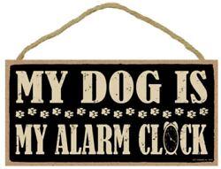 My Dog is My Alarm Clock Sign Plaque 10 x 5