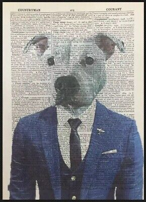 White Staffordshire Bull Terrier Dictionary Print Art Picture Print Staffy Suit Bull Terrier Tapestry