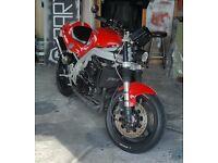 "1999 Triumph Daytona Speed Triple Streetfighter ""cafe racer"" not r1 gsxr fireblade r6 bmw"