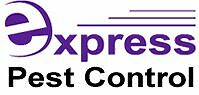 Express Pest Control Beaudesert Beaudesert Ipswich South Preview
