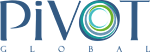 PIVOT GLOBAL INC