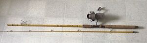 Vintage Wright and McGill Fishing Rod with Daiwa Reel