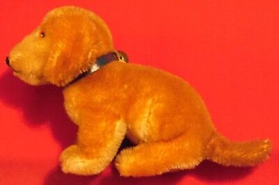 Steiff Hund  , Dackel Bazi , 14 cm x 7 cm x 10 cm , Uralt  , ohne Knopf im Ohr