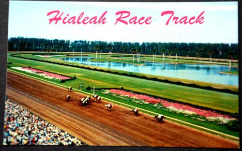 47440 Ak Horses Hialeah Race Track Down The Stretch