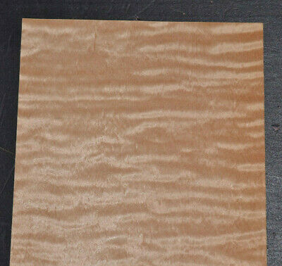 Curly Maple Raw Wood Veneer Sheets 5 X 29 Inches 142nd 7717-38