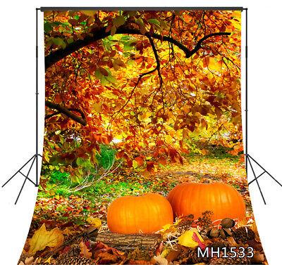 Jungle Trees Backdrop (Jungle Trees Autumn Leaves Fall Pumpkin Backdrop 5x7ft Vinyl Photo Background)