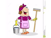 ****House Cleaner/Ironer Available ****