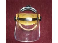 Faceshield visors
