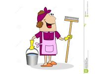 Experienced Cleaner Available - Forfar area