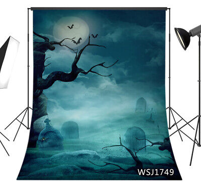 Halloween Spooky Graveyard Graves Bats Backdrop 5x7ft Vinyl Photo Background LB - Halloween Spooky Backgrounds