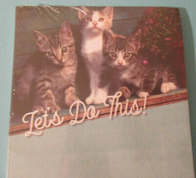 Two Magnetic Lined Cat Kitten Pads 9x4 Lets Do This  Personal Assist