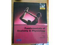 Fundamental of Anatomy & Physiology