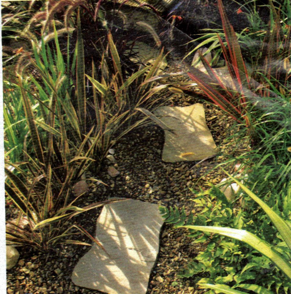 BRADSTONE REAL SANDSTONE GARDEN STEPPING STONES  fossil buff CLEARANCE PRICE