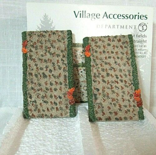 Department 56 Village Accessory Harvest Fields Path, Straight Set of 2  #4047610