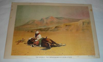 1879 chromo chromolithograph lithograph ~ BEDOUIN AND DYING HORSE