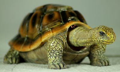 Nodding Tortoise, an Unusual Present or Gift for Tortoise Lovers - TURTLE GIFT