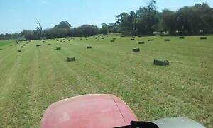 Lucerne Hay Small Square Bales Bunyip VIC Bunyip Cardinia Area Preview