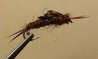 Cheater Belly Fly Fishing Nymph Black//Brown Pickle Fly Rubber Leg Solitude Fly