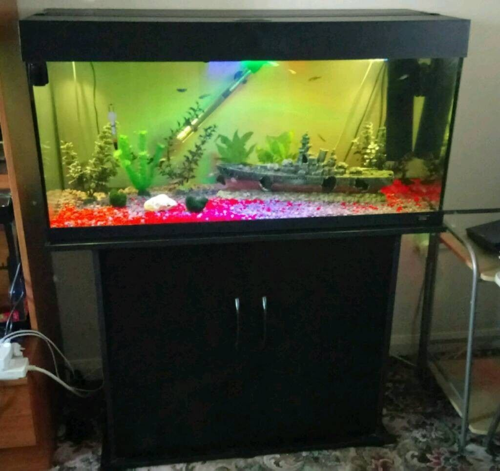Juwel fish tank aquarium full setup clean and tidy in for Clean fish tank
