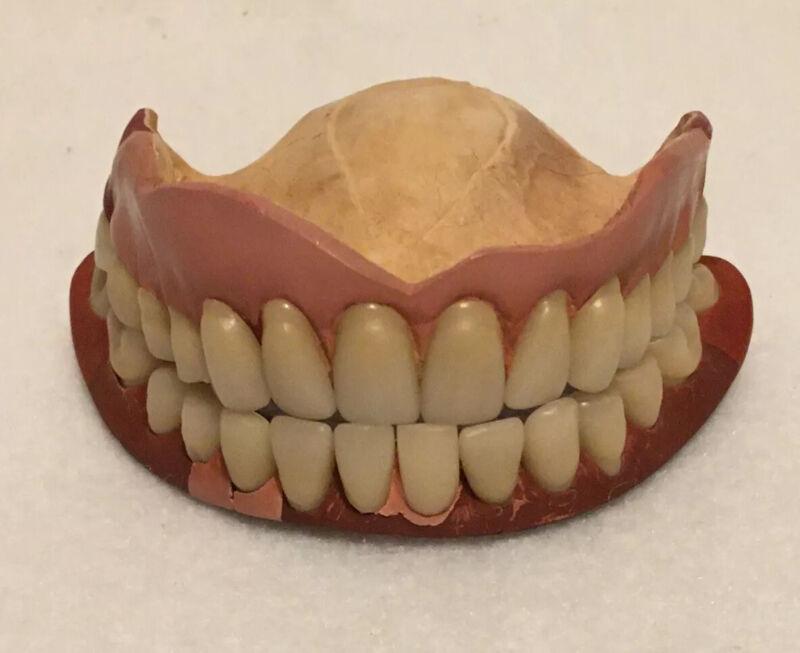 Antique Dental Study Piece Teeth  #2