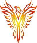 Phoenix Findings