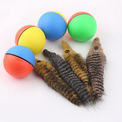 Dog Cat Weasel Motorized Funny Rolling Ball Pet Appears Moving Alive Toy GGand#